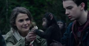Apes 2