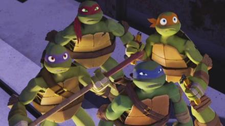 crazy turtles