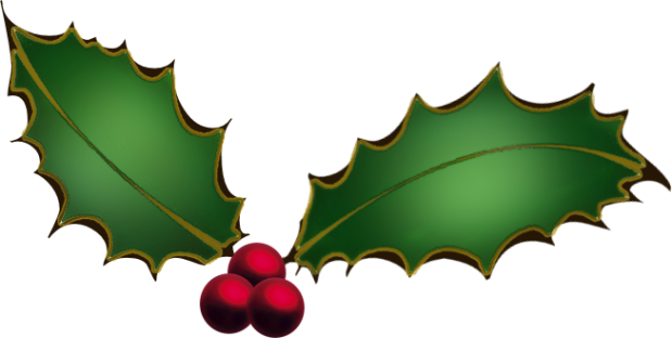 christmas-holly-clipart-ecM7Gbgcn