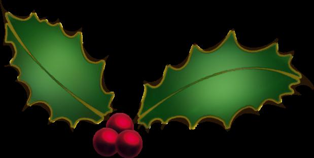 christmas-holly-clipart-ecM7Gbgcn